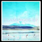 flamingos 1000pix